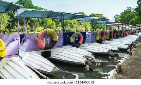 Colorful pedal boats parked in a long line at pier in park