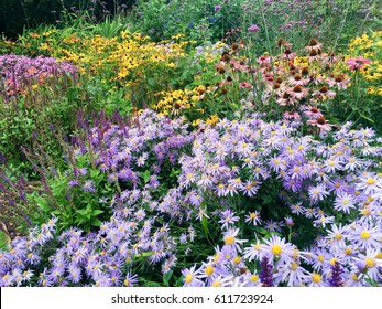 Perennial border images stock photos vectors shutterstock colorful perennial flower border in a garden mightylinksfo