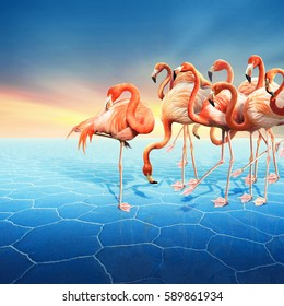 Colorful photo manipulation with a range of red flamingo at right side in the blue desert with a beautiful sunset sky