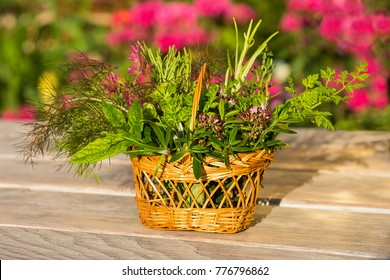 Colorful picture of a basket with fresh healing herbs, can be used for cooking or alternative medicine.