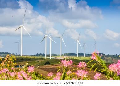 The colorful pink flower and big wind turbine is background location Khao Kho Phetchabun Thailand.