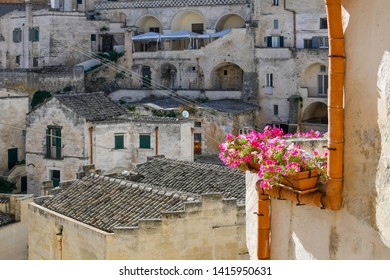 Colorful pink flowers in a planter outside an apartment mark a stark contrast with the ancient stone city of Matera, Italy, in the background.