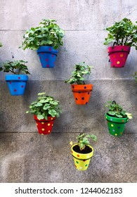 Colorful plant pots on a stone wall