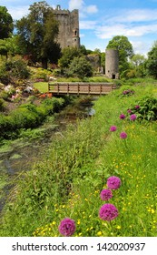 Colorful postcard of Blarney castle and gardens . Ireland