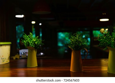 colorful pot of mock up plant in the room at night with some light turn on. night scene.