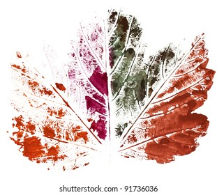 Colorful print of a maple leaf isolated on white background