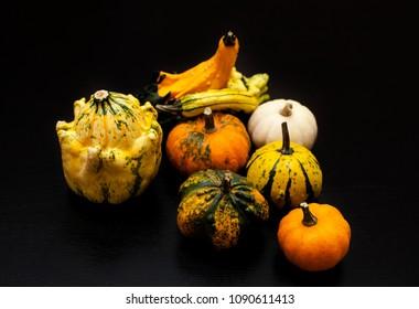 Colorful pumpkin and squash