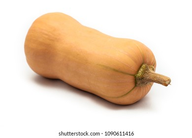 Colorful pumpkin and squash Butternut