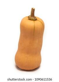Colorful pumpkin and squash, Butternut