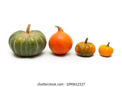 Colorful pumpkin and squash, Red Kuri, Kabocha,