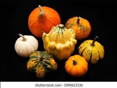 Colorful pumpkin and squash, Red Kuri