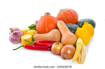 Colorful pumpkin and squash, Red Kuri, Kabocha, Butternut