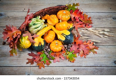 Colorful pumpkins in basket with autumn leaves on a vintage wood background.