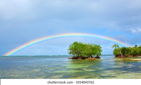 Colorful rainbow over caribbean sea .Travel background.