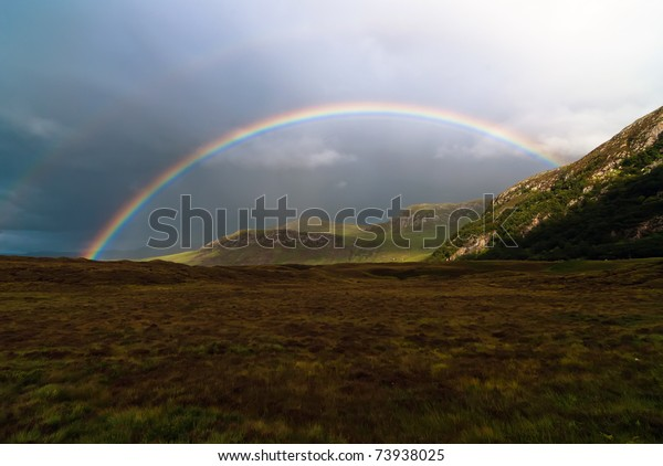 colorful rainbow at the sky over a meadow