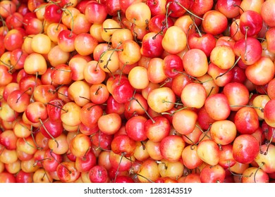 Colorful Rainier yellow cherries are loaded with vitamins and one of the sweetest summer stone fruits that you can eat