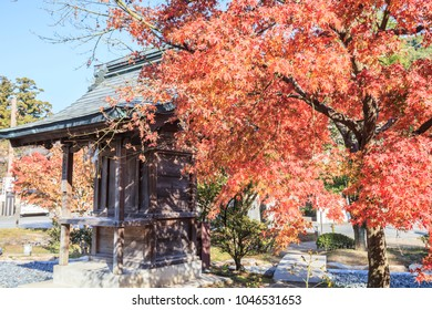colorful red maple leaves in Dazaifu Tenmangu Shrine of fukuoka of japan.