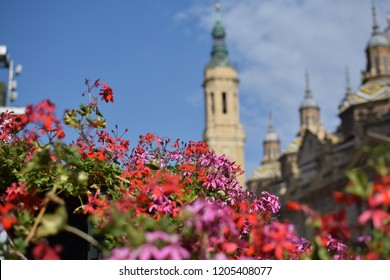 Colorful red and pink flowers. In the background Cathedral-Basilica of Our Lady of the Pillar in Zaragoza, Spain
