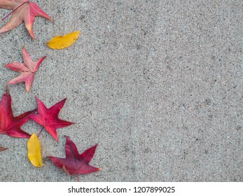 Colorful red and yellow autmun leaves on concrete floor. Copyspace