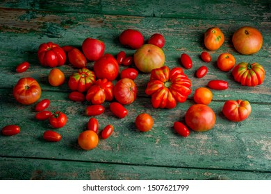 Colorful red , yellow, orange, green,black tomatoes. autumn background. vintage wooden background