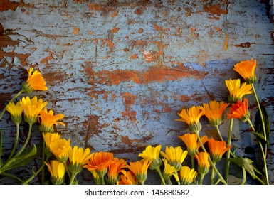 Colorful Retro Flowers/flower background with orange flowers on grunge texture