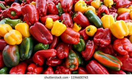 Colorful ripe organic bell peppers displayed at a farm market stall in southern California, late in the summer season