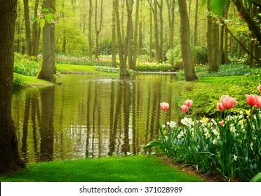 Colorful river landscape  in spring dutch garden Keukenhof, Netherlands, toned