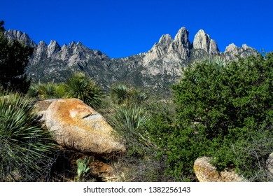 Colorful rocks, trees, and stands of yucca enhance Organ Mountains-Desert Peaks National Monument in New Mexico