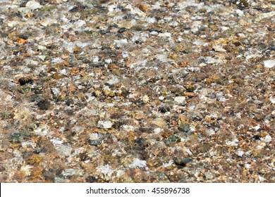 colorful rolling stones sea bottom pattern musk seaweed