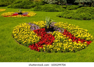 Colorful round flower borders on a green meadow in sunny weather