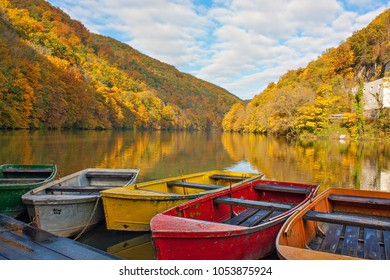 Colorful row boats anchored on a lake in the middle of beautiful autumnal forest