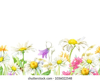 Colorful seamless border of summer blooming wild flowers and leaves. Watercolor hand-painted chamomile, bellflower, calendula isolated on a white background. Bright sunny design for card, banner.