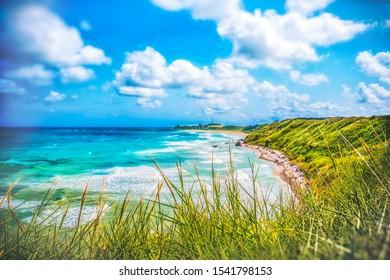 Colorful seascape of Italy - Abruzzo - Vasto - Punta Aderci and Libertini beach with wild grass .