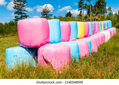 Colorful silage bales stacked in forest field.
