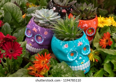 Colorful skull planters with suculents and flowers