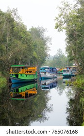 Colorful sleeping boats in the river of Tanjung Puting National Park, Indonesia.