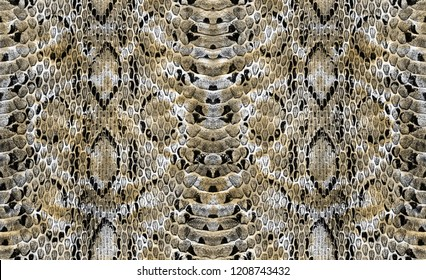 colorful snake skin texture.Seamless pattern
