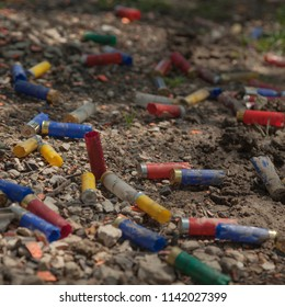 Colorful spent shotgun shells have been discarded and litter the ground.  Color, square image with space for copy.