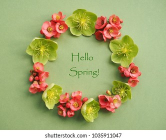 Colorful spring background with pink and green flowers
