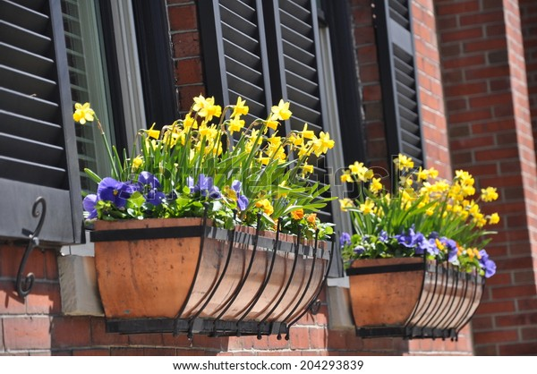 Colorful Spring Flowers Decorate Window Boxes Stock Photo