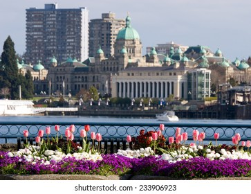 Colorful Spring flowers in front of Parliament Buildings and Inner Harbour, Victoria, BC, Canada