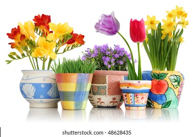 Colorful spring flowers in fun ceramic containers isolated on white
