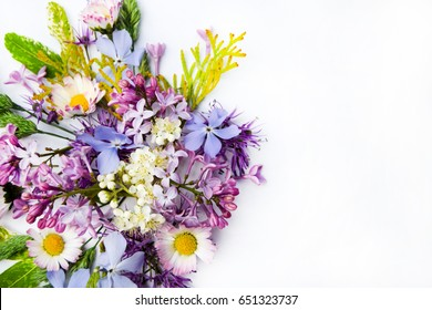 Colorful spring flowers isolated on white background.