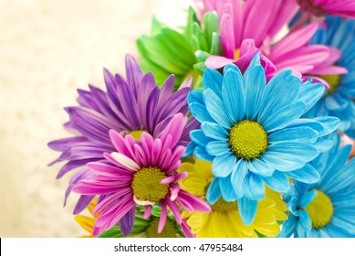 Colorful spring flowers on a beige background, horizontal with selective focus, copy space