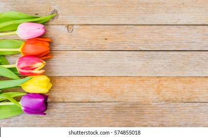 Colorful spring flowers tulips on wooden background with copy space.