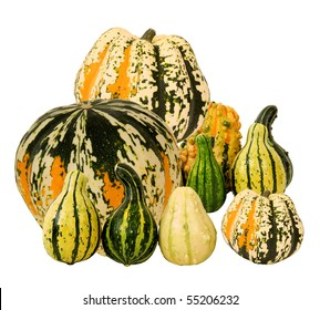 colorful squash for fall background
