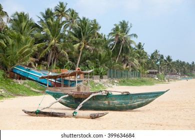 Colorful Sri Lankan fishing boat on sandy beach with palm trees in the background.