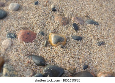 Colorful Stone on Baltic Beach Curonian Spit