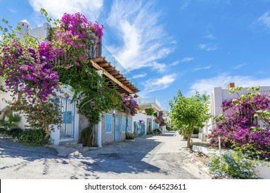 Colorful street view in Bodrum Town in Turkey