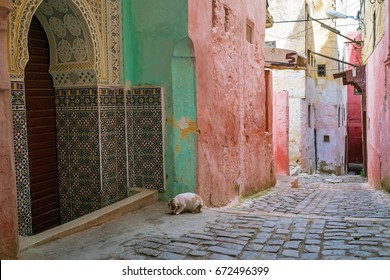 Colorful streets in the old medina of Meknes in Morocco.